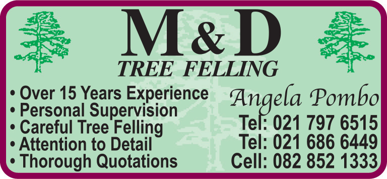 M&D Tree-Felling